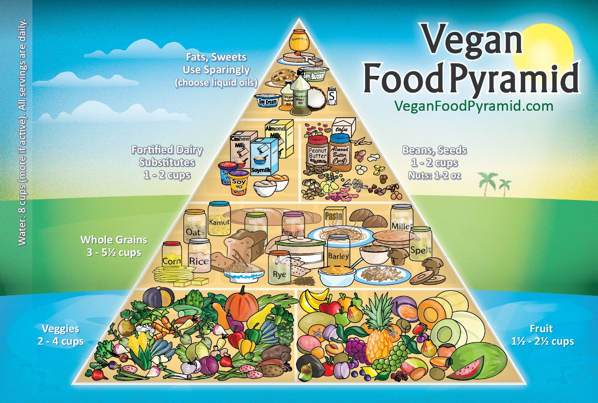 0126 vegan pyramid english